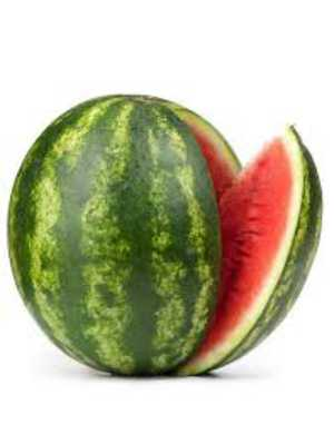 Watermelon Einkorn